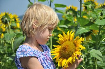 sonnenblume mit kind