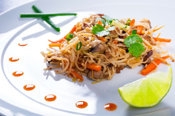 Chinese dish - chow mein noodles with duck and vegetables