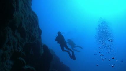 Diver Swim over Coral Reefs. Red Sea