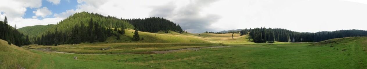 Poiana Ponor - valley in Bihor mountains in Apuseni in Romania