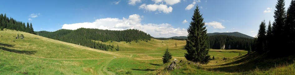 Poiana Ponor - valley in Bihor mountains in Apuseni in Romania