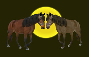 two brown horses on dark background