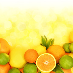 Fresh citrus fruit in shiny background