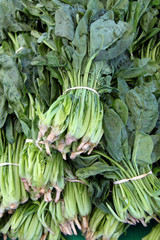 fresh organic spinach