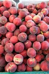 fresh organic ripe peaches