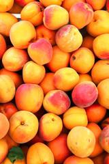 fresh organic ripe nectarines