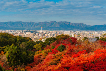cityscape of Kyoto with colorful leaves