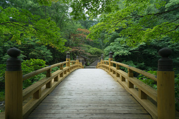 Old wooden bridge in traditional Japanese garden