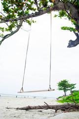 wood swing and tree