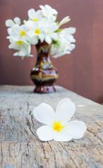 frangopani on wooden,in vase