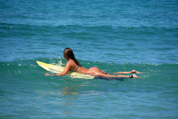 surfista sexy