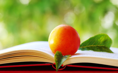 plum with leaves  on open book