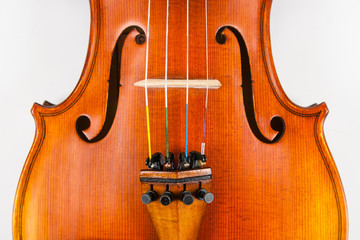 Close up of violin body, fine tuners and bridge on white
