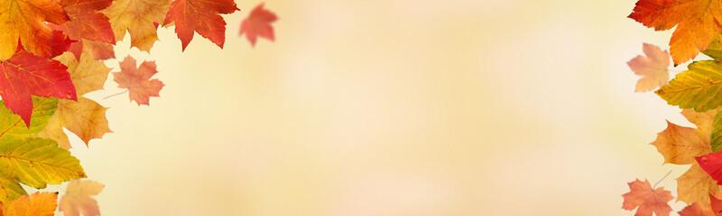 Herbstliches / Bokeh Hintergrund