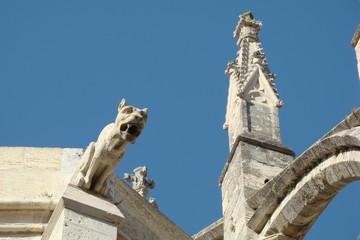 Gargouilles,Cathédrale de narbonne,Aude