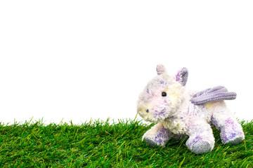 cute baby unicorn