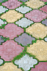 Path of colored tiles from the growing grass in the gaps as back