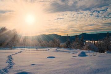 winter  sunset  Christmas  landscape