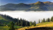Beautiful mountain landscape with fog
