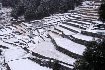 四谷千枚田の冬景色