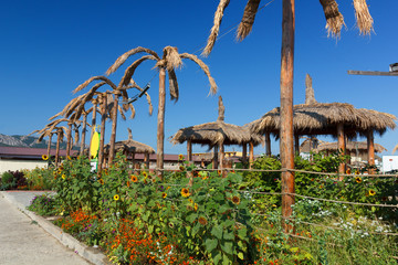 Beautiful thatched palm trees and sunflowers. Thatched roof