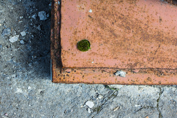 Background metalwork on the pavement with moss sprouting
