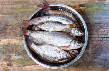 fish in iron bowl on wooden desk