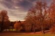 Herbst, Abendsonne