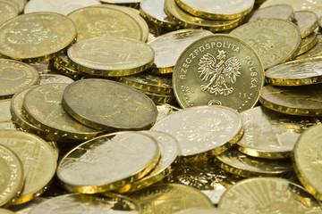 Polish Zlote PLN coins