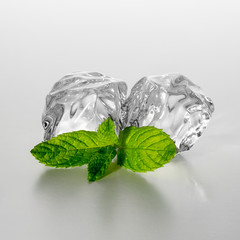 Fresh mint leaf with ice cubes