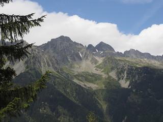 Subiendo a los Alpes desde Chamonix con tren cremallera