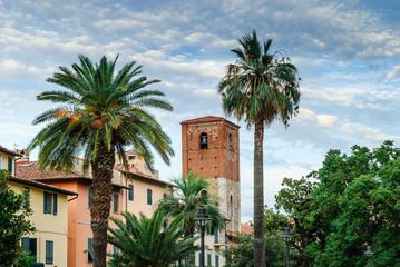 Palme e Campanile della Chiesa di San Frediano, Pisa