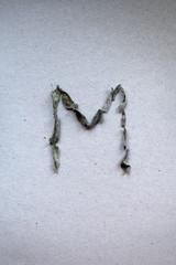 Mint letter M