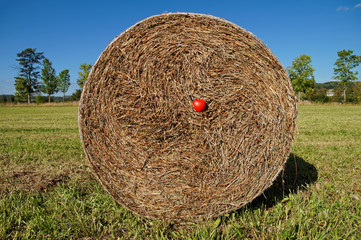Red heart on a hay bale, hay compressed texture