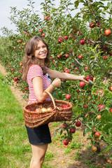 jolie femme cueillant une pomme