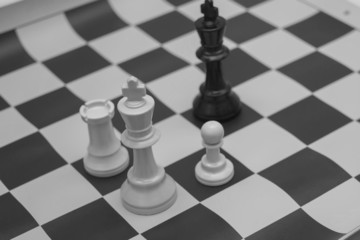 White and black king challenging for victory in black and white