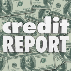 Credit Report Score Money Cash Background 3d Words