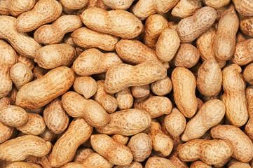 Dry roasted peanuts.