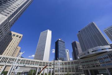 快晴青空 東京都庁から新宿高層ビル街を望む