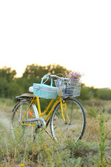 Bicycle in meadow during sunset