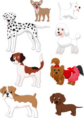 Cartoon dog collection