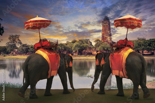 Plexiglas Olifant elephant dressing with thai kingdom tradition accessories standi