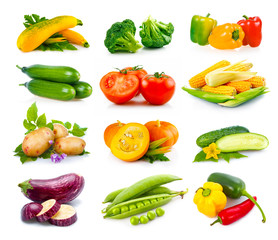 Set of ripe autumn vegetables isolated in white