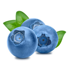 Blueberries with leaves on white background - 1 to 1 ratio
