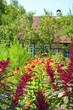 canvas print picture - Colorful flower garden