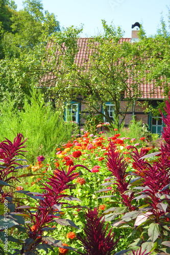 canvas print picture Colorful flower garden