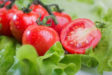 Close-up of tomatoes on a background of green salad