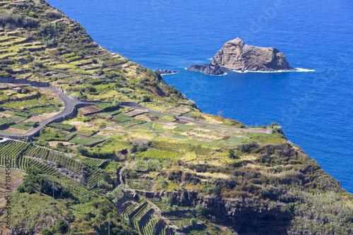 canvas print picture Landwirtschaft auf der Insel Madeira, Portugal
