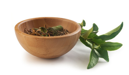 Tea branch with dried tea