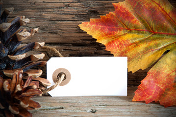 Banner with Copy Space and Autumn Decoration